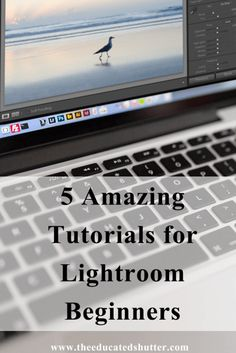 New to Lightroom? Need a little help getting the hang of it? Don't worry! I didn't know how to use Lightroom at one point too! Here are 5 Lightroom Tutorials that really helped my photography and my workflow. Check them out! | The Educated Shutter