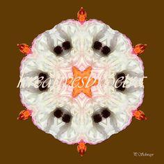 "Mandala  ""Blume Weiss""  kreativesbypetra Mandala Art, Petra, Christmas Bulbs, Inspiration, Holiday Decor, Spirit, Flowers, Home Decor, Mandalas"