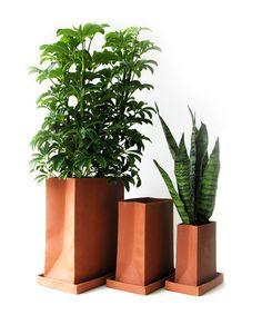 Terracotta Paper Bag Planters