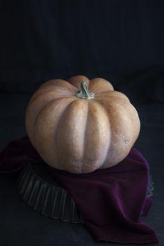 100% Végétal: Pumpkin Pie citrouille courge