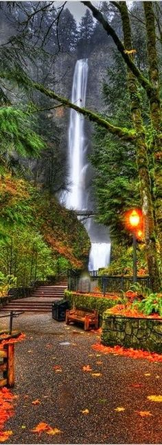 Autumn at Multnomah Falls in the Columbia River Gorge near P. - WaterfallsAutumn at Multnomah Falls in the Columbia River Gorge near Portland, Oregon Places To Travel, Places To See, Beautiful World, Beautiful Places, Simply Beautiful, Amazing Places, Beautiful Sites, Absolutely Gorgeous, Wonderful Places