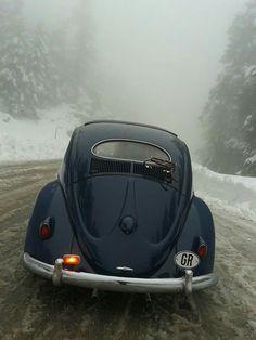 Volkswagen Beetle - Kever