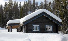 TRIVELIG OMRÅDE: Tømmerhytta Innsikt ligger i et hyggelig område med fine stølsveier, små hytter, gode fiskemuligheter og perfekte skiforhold.