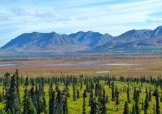 September on the beautiful Glenn Highway. One of the highlights of our Alaska Highway adventure.