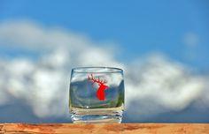 Verre à eau ou à apéritif Cerf rouge Crédit Photos : JP.Noisillier/nuts.fr Création : C.Bergiron