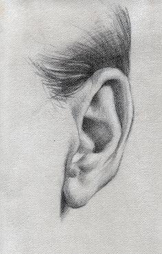 EAR STUDY by AbdonJRomero on DeviantArt