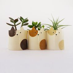 Funny kitty plant holders, featured on NONAGON.style