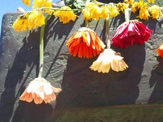 Santa Cruz Surfer Memorial - Flowers for a friend who passed. Memorial Flowers, California Beach, Lifestyle, Painting, Santa Cruz, Painting Art, Paintings, Paint, Draw