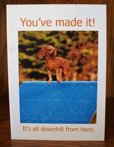 Dog Congratulations Card You've Made It by Sophiagoestothedogs