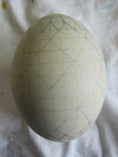 dividing an egg with rosettes at the ends