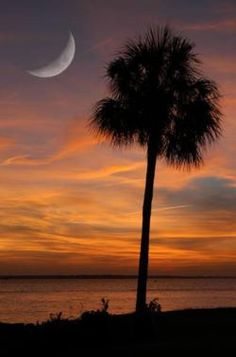 nothing better than the palmetto state. I agree.