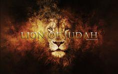 lion of judah | Lion of Judah - Believers4ever.com