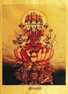 Goddess Gayatri (via Pepperfry.com) Gayatri Devi, Gayatri Mantra, Durga Images, Lakshmi Images, Saraswati Goddess, Durga Maa, Kali Goddess, Goddess Art, Shiva Shakti