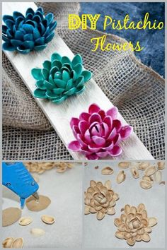 Don't toss out your pistachio shells ~ make beautiful flowers with them.: