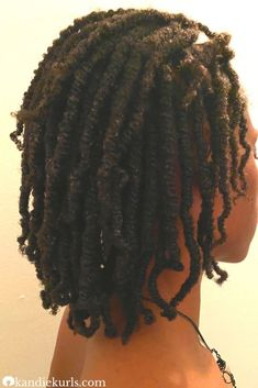 Mini twists are super easy to do regardless of someone's personal knowledge of hair. It's a great protective style for the wintertime especially if you keep it moisturized and best of all, it's versatile. #twists #howto #tips #hacks #curly #mini #natural #hair #style Natural Hair Twists, Natural Hair Care Tips, Natural Hair Styles, Twist Hairstyles, Protective Hairstyles, How To Grow Dreads, Healthy Hair Tips, Hair Growth Tips, Hair Remedies