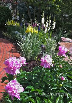 Deer Proof Flowerbed: snapdragon, delphinium, peony, foxglove. I think these would grow in Central Oregon.