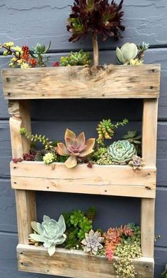 You may finish your pallet planters with nice touches like appropriate paints of any color, perhaps those who match your yard décor best. You can get some plant ideas which go well with each DIY pallet planter. Visit for more ideas Diy Planters, Garden Planters, Wood Pallet Planters, Balcony Garden, Succulent Planters, Ideas For Planters, Garden Ideas With Pallets, Succulent Wall Diy, Pallet Garden Ideas Diy