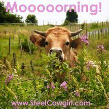 Moooooorning!