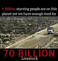 animal agriculture: creating scarcity from plenty, there are approximately 1 billion starving people on this planet #truth #logic 101