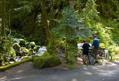 Hiking, biking and waterfalls along the Historic Columbia River Highway State Trail near Cascade Locks, Ore. | The Seattle Times