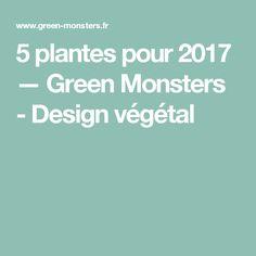 5 plantes pour 2017 — Green Monsters - Design végétal