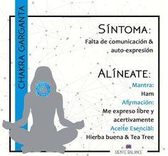"Quinto Chakra ""garganta"" Chakra Meditation, Kundalini Yoga, Meditation Music, Chakra Healing, Mindfulness Meditation, Reiki Therapy, Mudras, Yoga Mantras, Chakra System"
