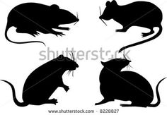 mouse silhouettes free | four rat silhouettes isolated on white background - stock vector