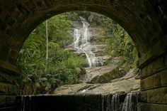 Tijuca National Park - Rio de Janeiro, RJ