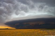Copyright:© Mike Hollingshead   Caption:Severe storm races southeast in southwest Nebraska June 10, 2006 producing high winds and small hail.