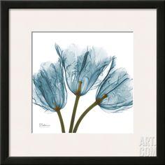 Tulips in Blue, by Albert Koetsier