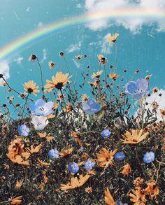 Ed Sheeran - Photograph - Flower Wallpaper, Nature Wallpaper, Cool Wallpaper, Wallpaper Backgrounds, Aesthetic Backgrounds, Aesthetic Iphone Wallpaper, Aesthetic Wallpapers, Flower Aesthetic, Aesthetic Pictures