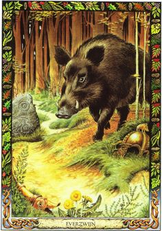 Boar | The Druid Animal Oracle by Stephanie and Phillip Carr | Meaning: warrior spirit, leadership and direction | Reversed: it means losing one's sense of direction.
