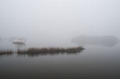 Photo Friday: Foggy Cedar Key, Florida