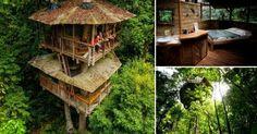 Una+casa+del+árbol+que+es+hotel+y++santuario+natural