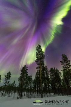 Nightlights, Aurora Borealis, Location History, Northern Lights, It Cast, Clouds, Sky, Nature, Naturaleza