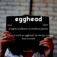 Interesting English Words, Unusual Words, Weird Words, Learn English Words, English Phrases, New Words, Slang English, English English, Daily English Vocabulary