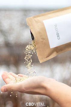 Superfood HANF: Im Vergleich zu Chia-Samen, Avocado & Co. steht das heimische Superfood klar im Vorteil: Kurze Transportwege, niedrigere Preise, voller Nährstoffgehalt 🌱 Superfood, Protein, Avocado, Coffee, Hemp Seeds, Complete Nutrition, Kaffee, Lawyer, Cup Of Coffee