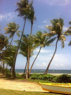 Dorado Beach, surfing and kitesurfing in Puerto Rico. La isla del encanto. Verano 2013