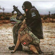 Defense Matters : Photo