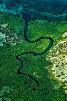 Snake river - Mozanbique  Pemba area