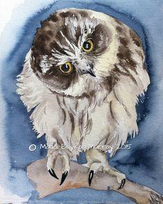 'Boobook Owlet' by Mandi Baykaa-Murray
