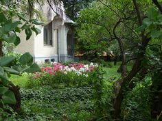 Casa gorky giardino foto simonetta sandri