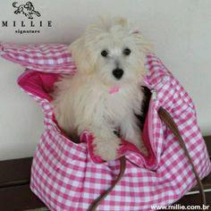 Magh na BOLSA GISELE PROVENCE MILLIE.  Para transportar seu Pet com conforto e estilo.  Entregamos em todo o Brasil, acesse: www.millie.com.br