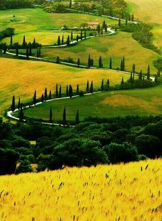 60 Postcards of Country Scenes for a Rural Album . Sorrento Italy, Naples Italy, Tuscany Italy, Capri Italy, Sicily Italy, Venice Italy, Italy Tourism, Italy Travel, Travel Trip