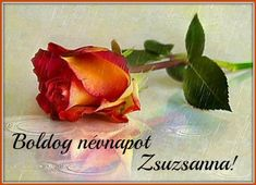 Name Day, Vegetables, Birthday, Happy, Plants, Food, Good Afternoon, Messages, Positive Good Morning Quotes