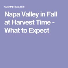 Napa Valley in Fall at Harvest Time - What to Expect