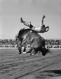 'Jim Mihalek on Hud, Tucson 1971' by rodeo photographer Louise Serpa, who died in early 2012.