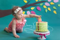 Owl cake smash, teal, green and pink © Dimery Photography #cakesmash