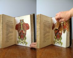Antique Book  Vitalogy 1919 Edition by luola on Etsy, $96.00