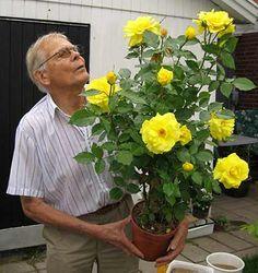 The Constant Gardener, Garden Inspiration, Garden Plants, Gardening Tips, Planting Flowers, Flora, Mars, Outdoor, Gardens